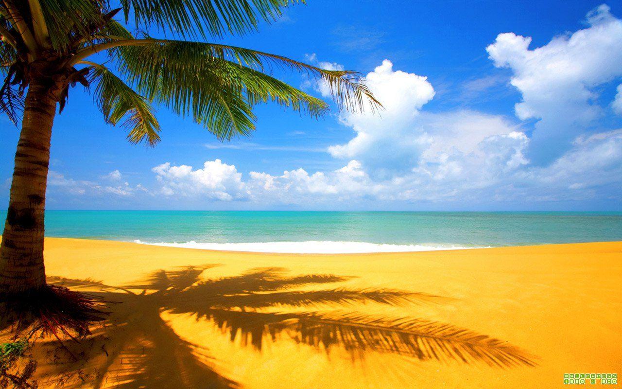 Похолодало? Отправляемся на пляж.